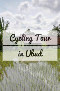 Cycle Ubud Bali tour
