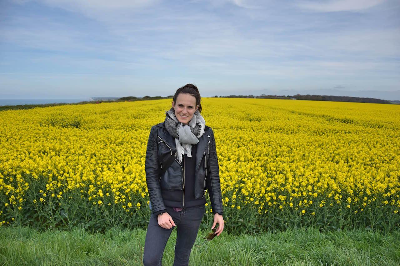 mustard normandy