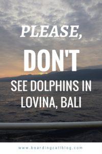 Lovina Dolphin tour