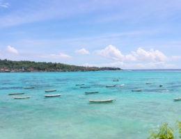 seaweed farm nusa lembongan